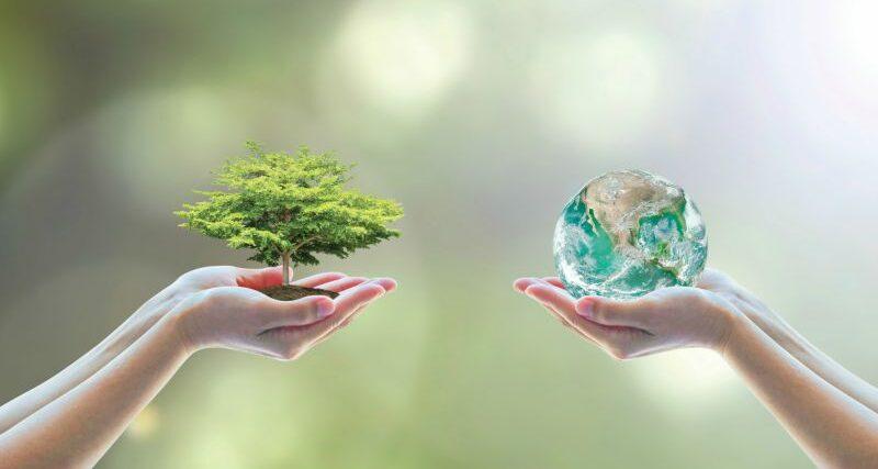 ISO 14001 2015 – GESTIÓN AMBIENTAL